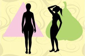 body shapes