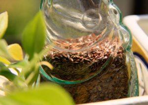 flax-seed---clean-toxins