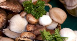 mushrooms - the healtiest foods