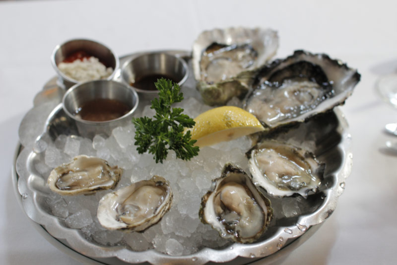 oysters rich in iron prevent anemia