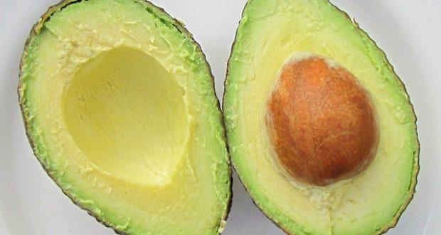 avocado in plate