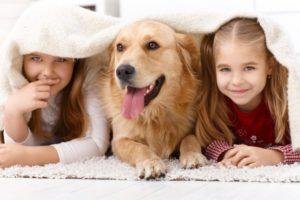 pet family