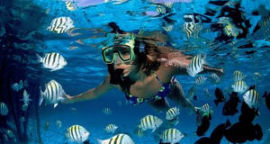 women diving