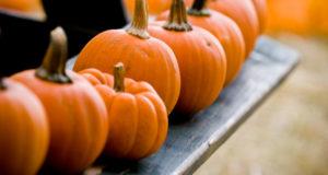 pumpkin for health
