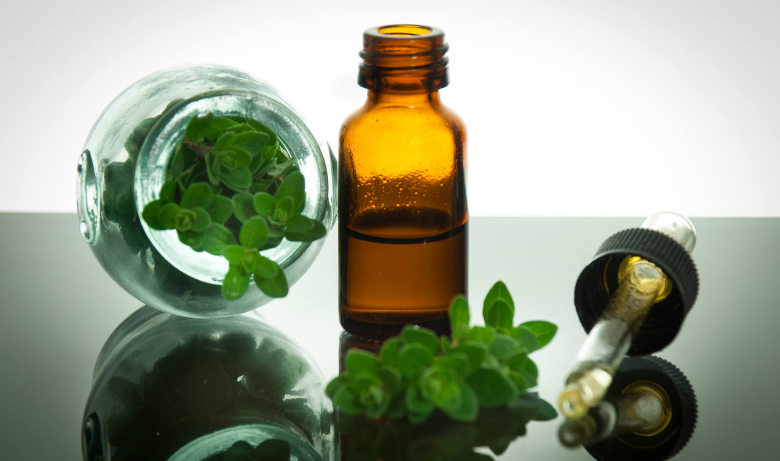 what can oil of oregano be used for