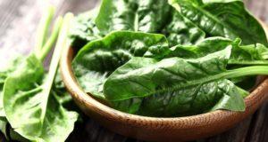 healthy food spinach